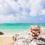 【必見!】沖縄への転職・移住を成功させるためのポイントとは!?